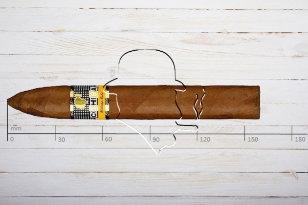Cohiba Piramides Extra, Ring 54, Länge: 160 mm