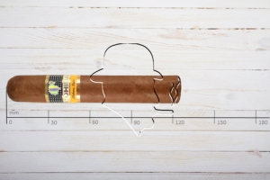 Cohiba Robusto, Ring 50, Länge: 124 mm, Tubo