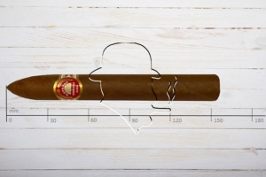 H.Upmann No.2, Piramides, Ring 52, Länge: 156 mm