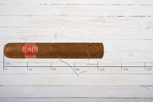 Juan Lopez Seleccion No.2, Robusto, Ring 50, Länge: 124 mm
