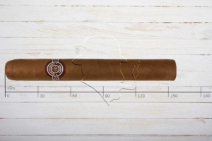 Montecristo Double Edmundo, Dobles, Ring 50, Länge: 155 mm