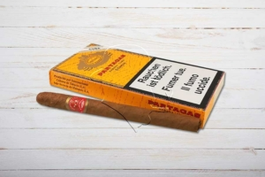 Partagas Chicos, Puritos, Ring 29, Länge: 112 mm, Box 5er