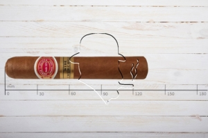 Romeo y Julieta, Wide Churchill, Montesco, Ring 55, Länge: 130 mm
