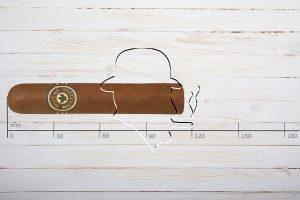 Joya de Nicaragua Clasico Consul, Short Robusto, Ring 52, Länge 114 mm