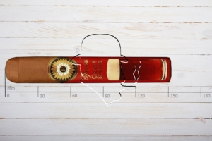 Perdomo Special Craft Series Sun Grown Amber, Gordo, Ring 60, Länge: 152mm