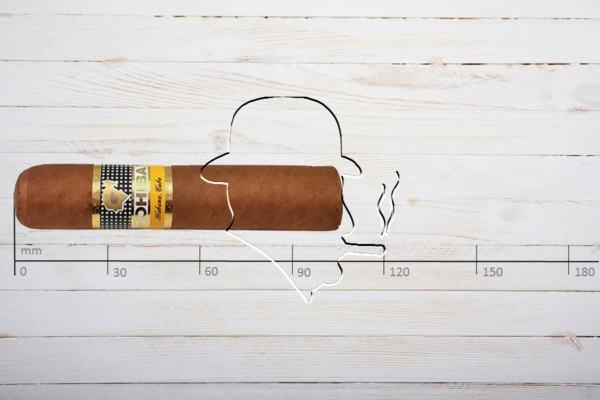 Cohiba Medio Siglo, Petit Robusto, Ring 52, Länge: 102 mm