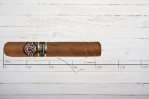 Montecristo Open Master, Robusto, Ring 50, Länge 124 mm