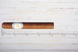 The Griffins Zigarren Classic No.500, Corona, Ring 43, Länge: 130 mm
