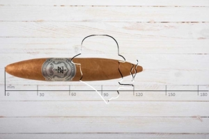 Zino Platinum Scepter Series Chubby, Perfecto, Ring 54, Länge: 127 mm