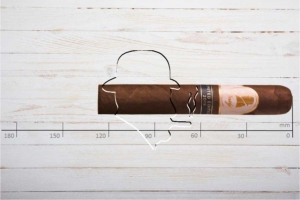 Davidoff Winston Churchill Limited Edition 2019, Robusto, Ring 50, Länge: 127 mm