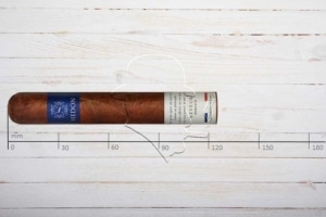 Hedon Reveur, Robusto, Ring 50, Länge: 124 mm