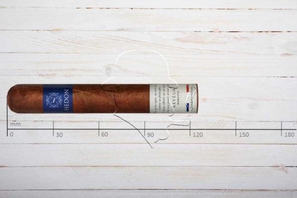 Hedon Reveur, Robusto, Ring 50, Länge: 124 mm