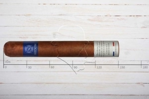 Hedon Savant, Grand Robusto, Ring 52, Länge: 150 mm