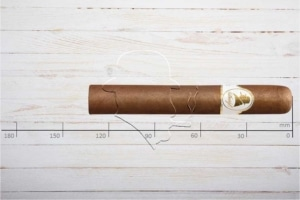 Davidoff Winston Churchill The Statesman, Robusto, Ring 52, Länge: 133 mm