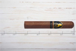 Davidoff Winston Churchill, The Late Hour Robusto, Dominikanische Republik