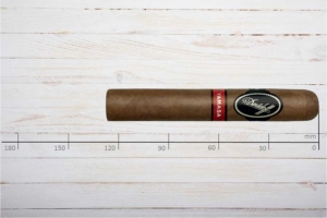 Davidoff Yamasa Robusto, Ring 50, Länge: 127 mm