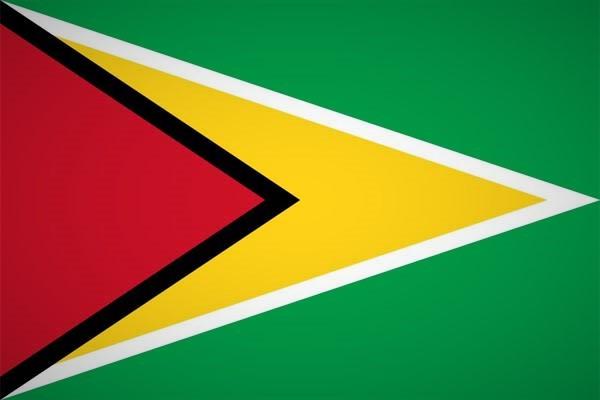 Guyana Fahne Flag