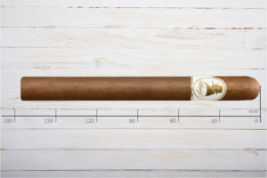 Davidoff Winston Churchill, The Aristocrat, Churchill, Ring 47, Länge: 175 mm
