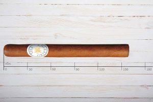 The Griffins Zigarren Classic No.300, Corona Larga, Ring 43, Länge: 159 mm